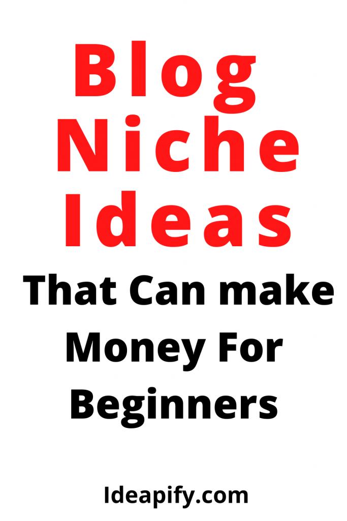 Best Blog Niche Ideas For Beginners That Can Make Money